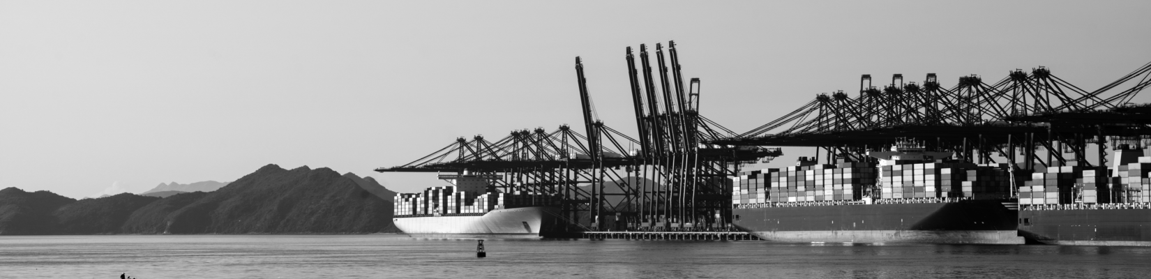 Black and White Image of Container Terminal with Shipped Docked and Mountains in the Background - BluJay Customs