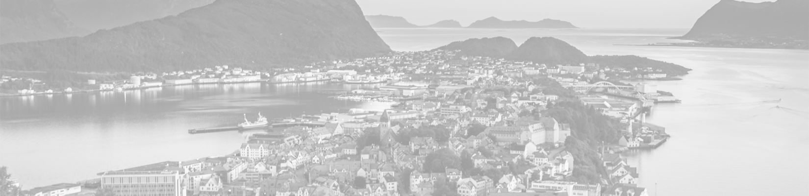 Transparent-Gray View of Town in Norway - BluJay Customs Management